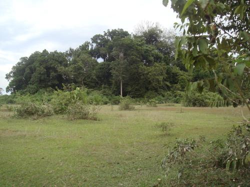 bunian-village